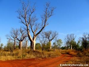 kimberly-australia-pictures - Copy