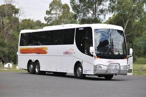 Bus 354.jpg_detail