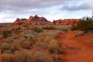 DesertWalk2